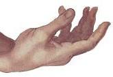RUright_hand_small